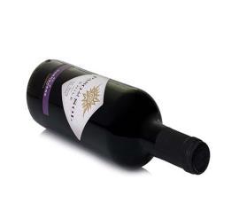 Vinho Chile Paso del Sol Carmenere 750ml