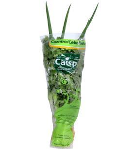 Cheiro verde coentro Caisp
