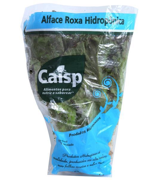 Alface Caisp Hidropônica Crespa Roxa Unidade - Imagem em destaque